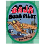 Bush Pilots loading=